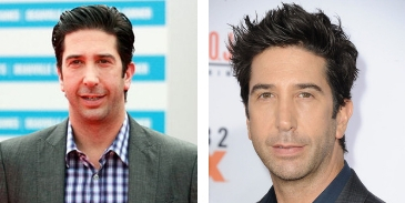 Answer this quiz questions on David Schwimmer