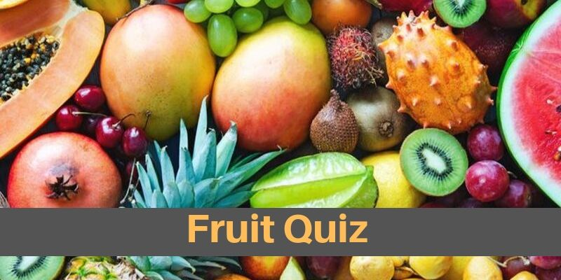 Even a high school graduate also easily score 9/10 in this fruit image quiz