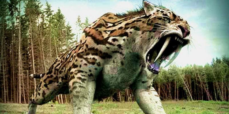 Which strange prehistoric creature are you
