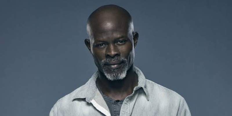 Answer this quiz questions on Djimon Hounsou and see how much you know about him