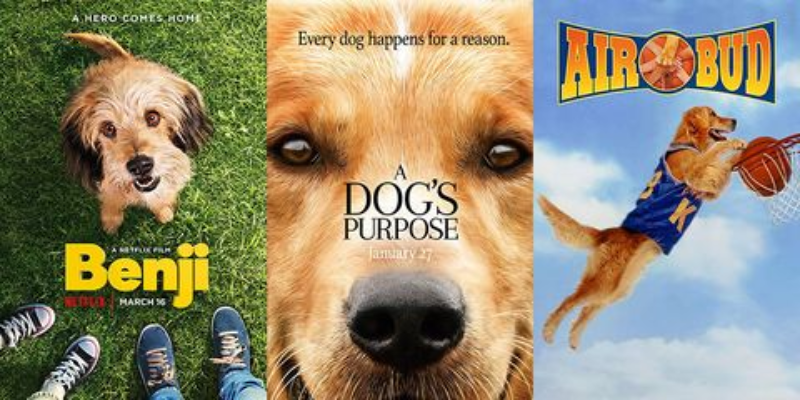 Can you guess the names of these movie dogs