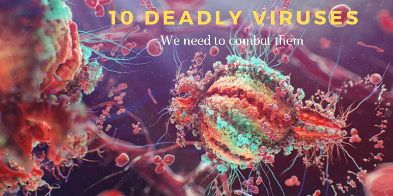Take this quiz and try to recognize these deadly viruses?