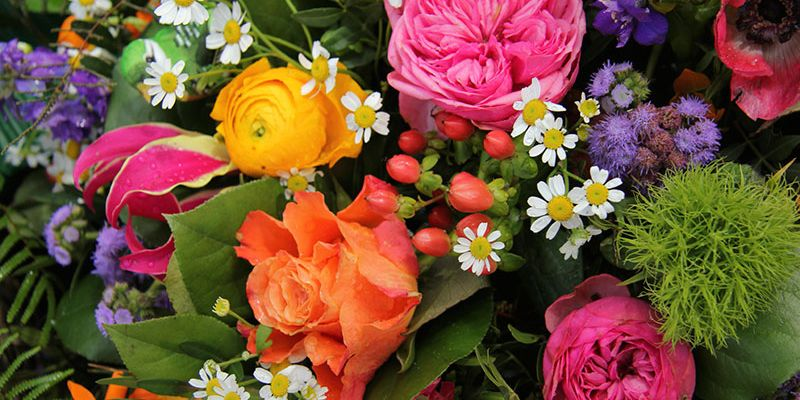 We can actually guess the flower that matches your personality