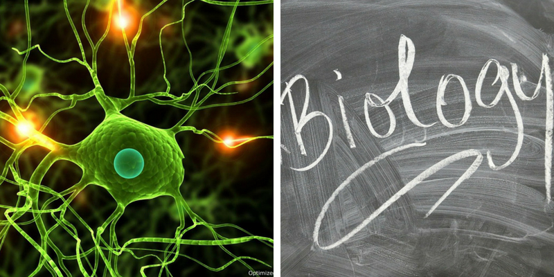 How strong are you in Biology,Take this quiz and check