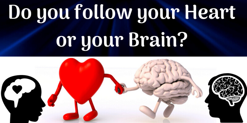 Do you follow your heart or your brain?